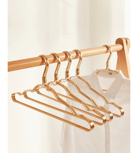 Stylish and Solid Brass Clothes Hanger 5013B-2720